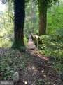 3480 Weakley Hollow Road - Photo 9