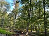 Doman Ridge Road - Photo 3