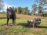 305 Rons Ridge Drive - Photo 44