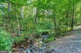 15490 Bob White Trail - Photo 53