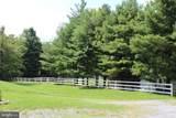 14780 Timber Lane - Photo 10