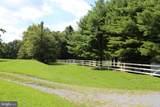 14780 Timber Lane - Photo 7
