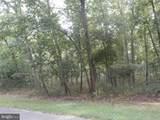 205 Locust Trail - Photo 14