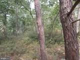 205 Locust Trail - Photo 16