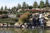 22854 Goldsborough Terrace - Photo 42