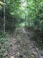 13620 Crabtree Falls Hwy - Photo 1