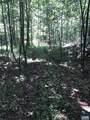 13620 Crabtree Falls Hwy - Photo 4