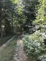 13620 Crabtree Falls Hwy - Photo 5