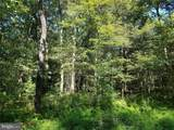 3487-LOT 7 Forest Street - Photo 2