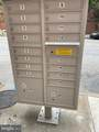 1204 Lafayette Avenue - Photo 19