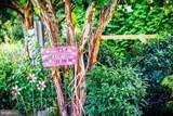 11402 Newport Bay Drive - Photo 48
