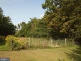 10 Hedge Apple Lane - Photo 26