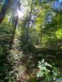 6973 North Fork Rd - Photo 62