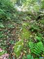 6973 North Fork Rd - Photo 63