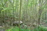 Windswept - Photo 10