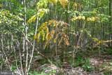 Windswept - Photo 11