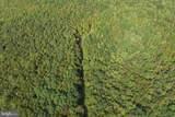 Windswept - Photo 2