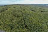 Windswept - Photo 6