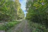 Windswept - Photo 8