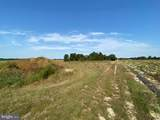 23943 Taylors Trail - Photo 3