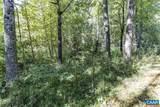 Pine Torch Ln - Photo 13