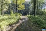 Pine Torch Ln - Photo 16