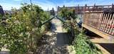 7206 Bustleton Avenue - Photo 29