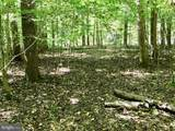 Lot A Myers Mill - Photo 4