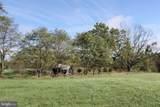 LOT 1 Mt Levels Farm Rd - Photo 9