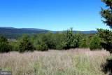24 +/- acres off Saratoga Drive - Photo 10