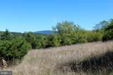 24 +/- acres off Saratoga Drive - Photo 9