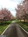 443 Springvale Road - Photo 71