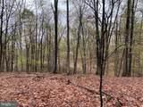 Little Creek Trail - Photo 2