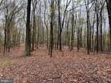 Little Creek Trail - Photo 4