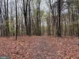 Little Creek Trail - Photo 6