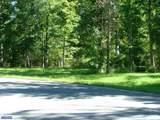 113 Mourning Dove Lane - Photo 5