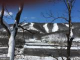 13571 Blairs Valley Road - Photo 3