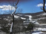 13571 Blairs Valley Road - Photo 4