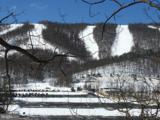 13571 Blairs Valley Road - Photo 5
