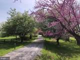 3074 Rectortown Road - Photo 45