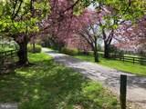 3074 Rectortown Road - Photo 46