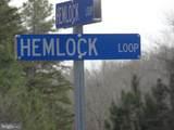 62 Hemlock Loop - Photo 7