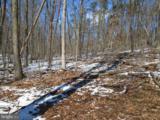 170 Budding Dogwood - Photo 21
