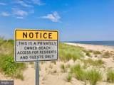 1622 Beach Plum Drive - Photo 9