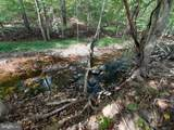 Back Creek Rd - Photo 4