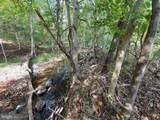 Back Creek Rd - Photo 5