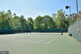 13412 Pitch Pine Court - Photo 33