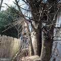 516 Spring Street - Photo 75