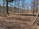 Tonoloway Point Circle - Photo 15