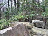 0 Mountain Falls Trail - Photo 9